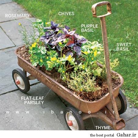 herbs 11 ایده های جالب برای پرورش سبزیجات در خانه
