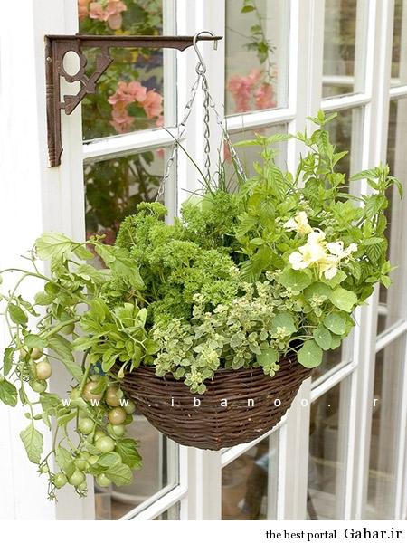 herbs 15 ایده های جالب برای پرورش سبزیجات در خانه