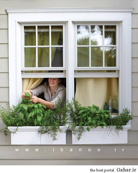 herbs 16 ایده های جالب برای پرورش سبزیجات در خانه