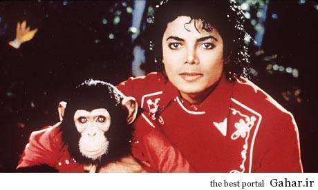 Michael Jackson with Bubb 001 به مناسبت پنجمین سالگرد درگذشت سلطان پاپ مایکل جکسون