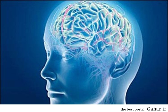 76ossmzlq3huc4szqtd 3 توصیه مهم برای پیشگیری از پیری مغز