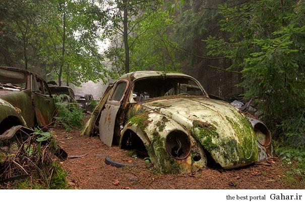chatillon car graveyard abandoned cars cemetery belgium 1 بزرگترین گورستان خودرو در بلژیک