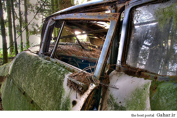 chatillon car graveyard abandoned cars cemetery belgium 12 بزرگترین گورستان خودرو در بلژیک