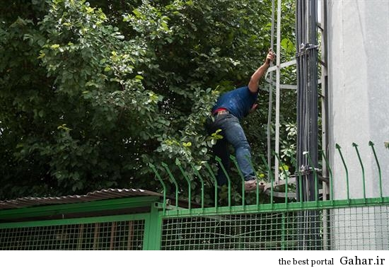 hamidreza5 خودکشی ناموفق در میدان هفت تیر تهران +تصاویر