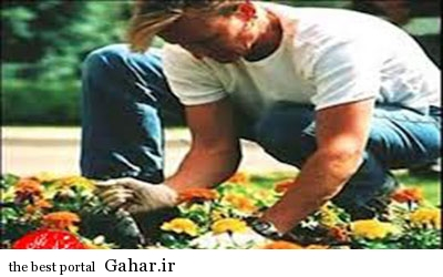 IMG23033729 ارتباط باغبانی با سلامتی