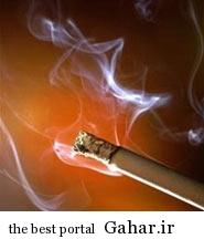 hhh1058 نکاتی درباره نيکوتين سيگار
