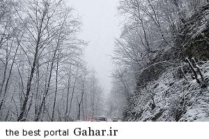 213216 بارش شدید برف در گیلان