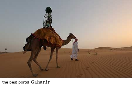 9307 8m2579 تجربه شتر سواری با گوگل