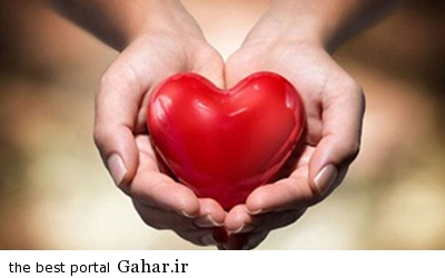 IMG11065630 خوراکی های محافظ قلب