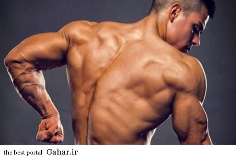 big triceps 480x320 بهترین تمرینات برای افزایش عضلات پشت بازو