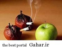 hhh1062 امراض سیگار کشیدن