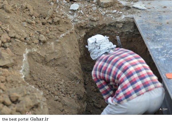 307044 262 عکس های محل دفن مرتضی پاشایی در بهشت زهرا