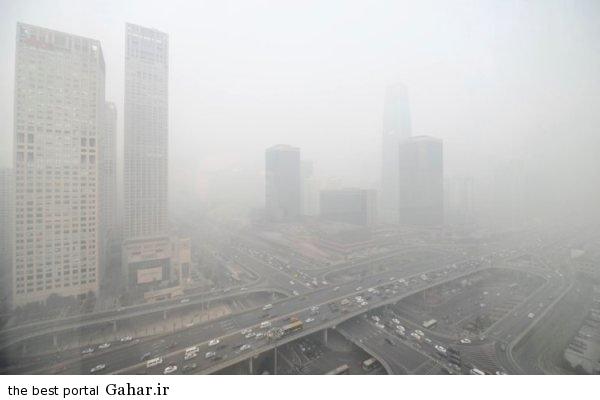 704622 مصرف خوراکی هایی که از آلودگی هوا جلوگیری می کند