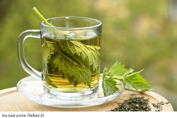 Herbal Teas بهترین گیاهان دارویی آرام بخش