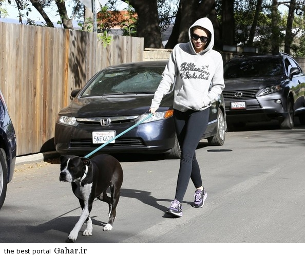 Miley Cyrus Takes Dog Walk M7PsXPGqwrxl عکس های جدید مایلی سایرس در حال پیاده روی