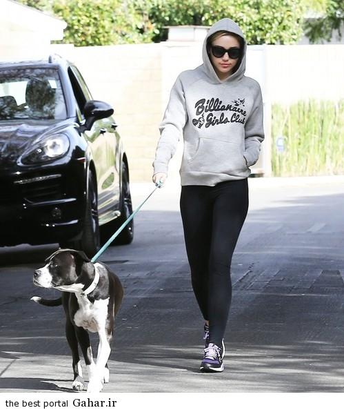 Miley Cyrus Takes Dog Walk hQy9nnziQzol عکس های جدید مایلی سایرس در حال پیاده روی