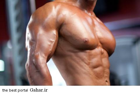 Triceps 3 480x320 آیا دوره های افزایش حجم خطرناک اند؟