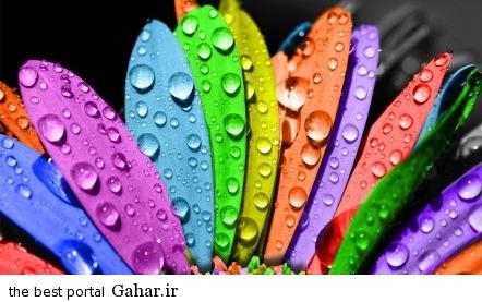 rangha gabe aks 6 داستان کوتاه و خواندنی رنگ عشق