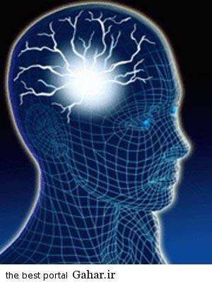 206849 lm3fN4Rm کشف راهی برای تغییر حافظه انسان و تغییر خاطرات