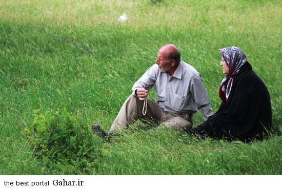 528611 622 تصاویری از آئین سنتی پنجاه بدر در قزوین