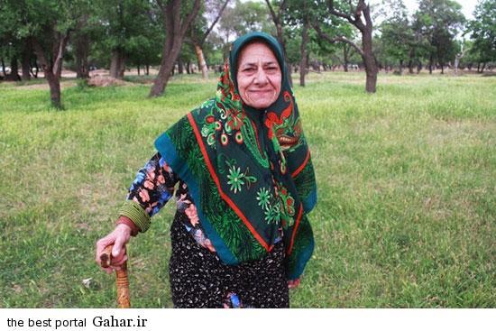 528630 198 تصاویری از آئین سنتی پنجاه بدر در قزوین
