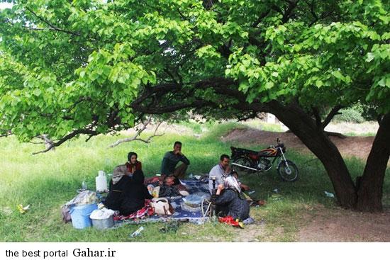 528632 997 تصاویری از آئین سنتی پنجاه بدر در قزوین
