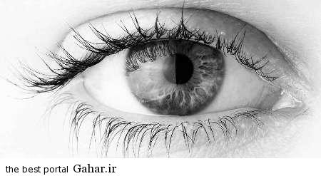 cheshm کشف جالب دانشمندان برای درمان نابینایی