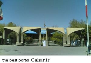 janin پیدا شدن یک جنین در محوطه دانشگاه تهران