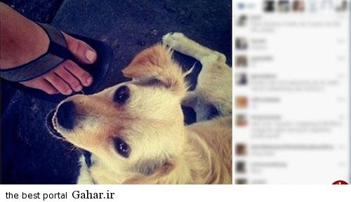 post انتشار اولین پست اینستاگرامی توسط شرکت اینستاگرام