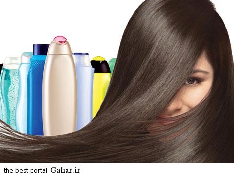 MOO1 معرفی انواع شامپو ها برای انواع موها