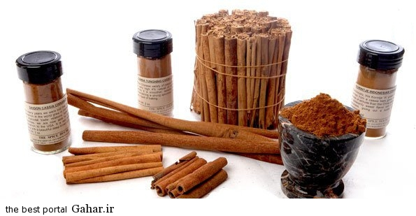 cinnamon1 اطلاعاتی در مورد مضرات و خواص دارچین
