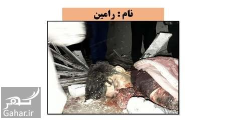 382266 Gahar ir هویت عوامل تروریستی تهران اعلام شد + عکس