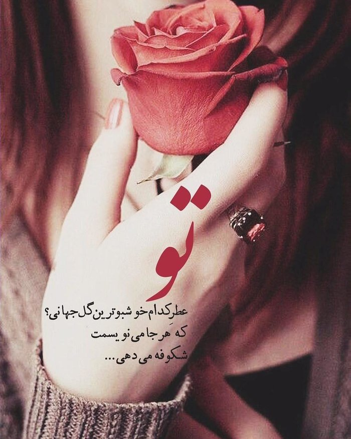 028956 Gahar ir عکس پروفایل گل های خاص و زیبا