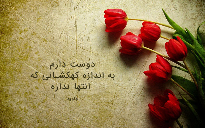 130262 Gahar ir عکس پروفایل گل های خاص و زیبا