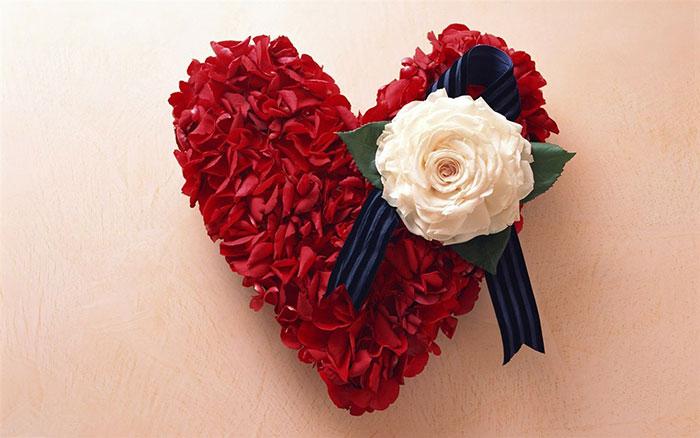 149906 Gahar ir عکس پروفایل گل های خاص و زیبا