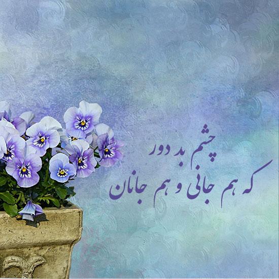 548146 Gahar ir عکس پروفایل گل های خاص و زیبا
