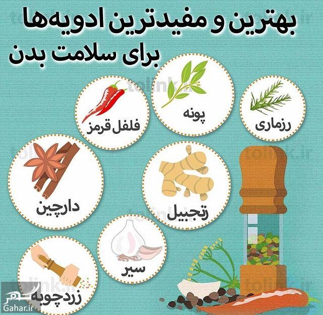 308988 Gahar ir مفیدترین ادویه ها برای سلامت بدن کدامند؟
