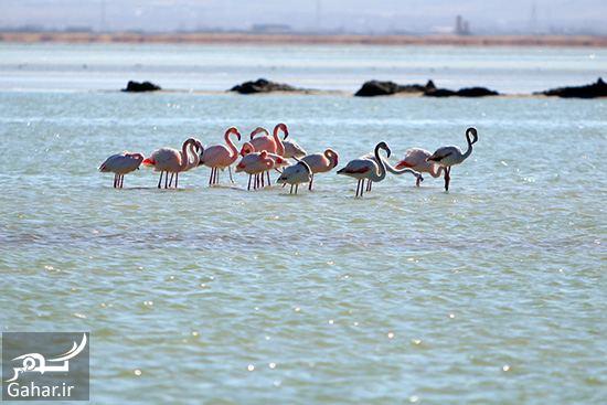 072355 Gahar ir معرفی بهترین مکان ها برای سفر در فصل پاییز