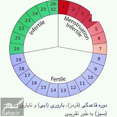 688328 Gahar ir آیا بارداری بدون دخول انجام می گیرد