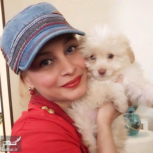 217747 Gahar ir عکس تیپ عجیب خانم بازیگر با سگ خانگی اش!