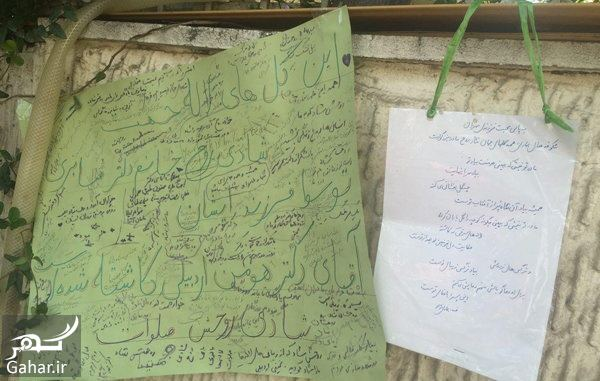 925580 Gahar ir آدرس باغ لاله شهرک غرب + دلیل جالب راه اندازی باغ لاله