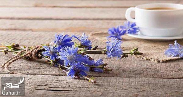 305603 Gahar ir عرقیات مناسب فصل بهار را بشناسیم!