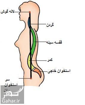 481893 Gahar ir درمان قوز کمر
