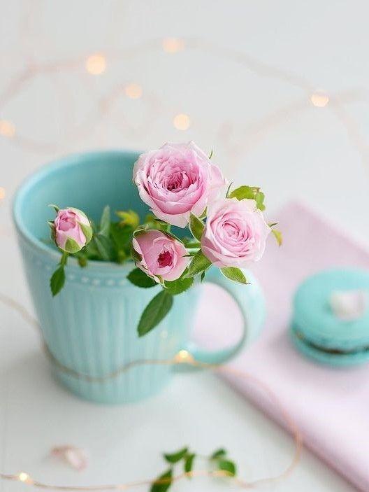 012158 Gahar ir عکس گل های زیبا برای پروفایل