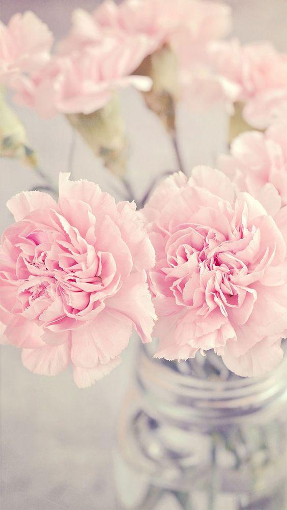 099826 Gahar ir عکس گل های زیبا برای پروفایل