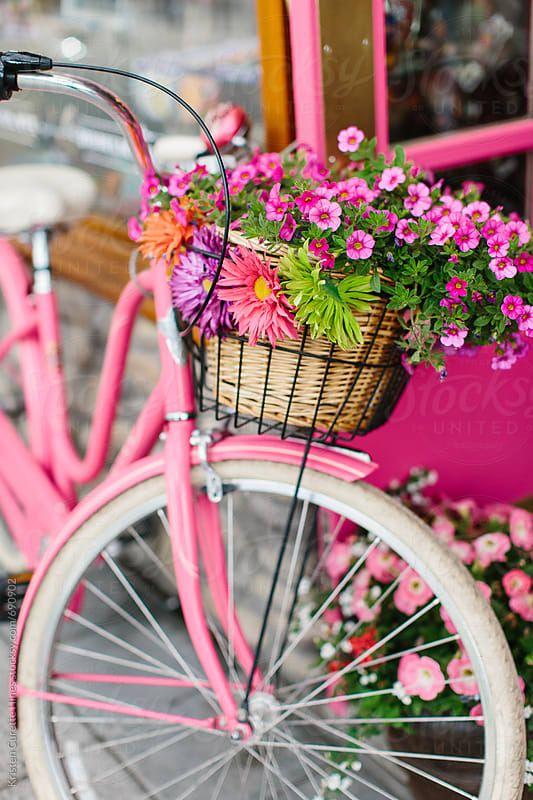 993022 Gahar ir عکس گل های زیبا برای پروفایل