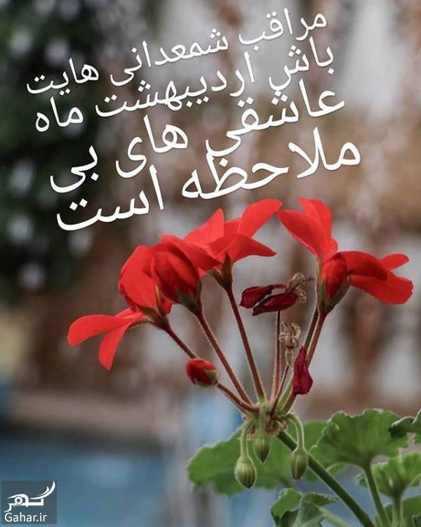 436726 Gahar ir پیام تبریک تولد اردیبهشتی ها