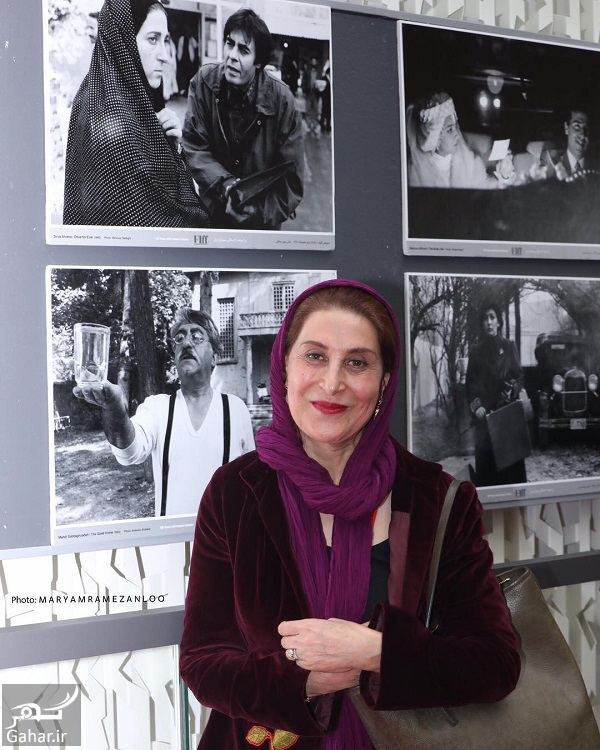 561154 Gahar ir عکسهای بازیگران در جشنواره جهانی فیلم فجر 98 (بخش اول)