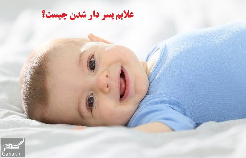 783828 Gahar ir علایم پسر دار شدن چیست؟