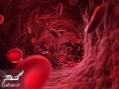 247353 Gahar ir درمان غلظت خون با میوه